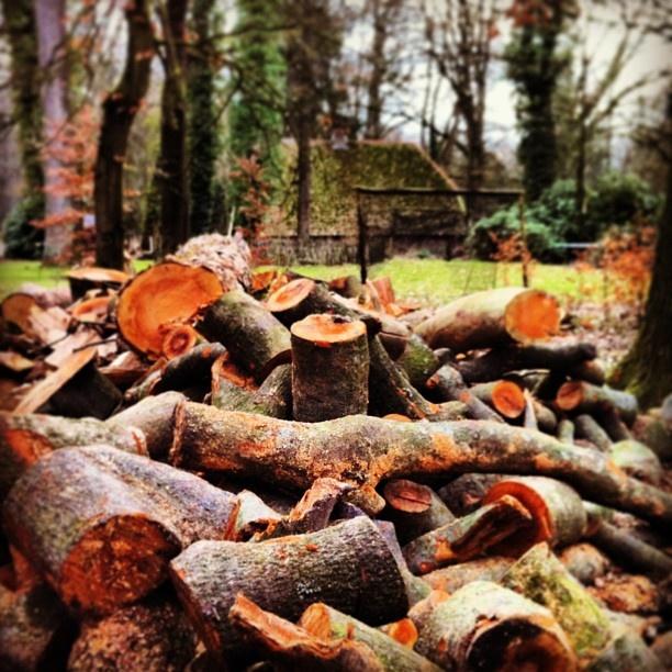 Beetje brandhout tegen de kou. - @marcel_tettero- #webstagram Twickel Twente