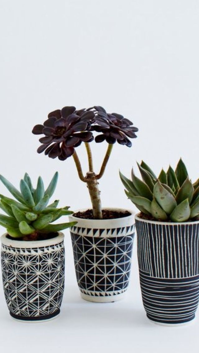 Decorated pots