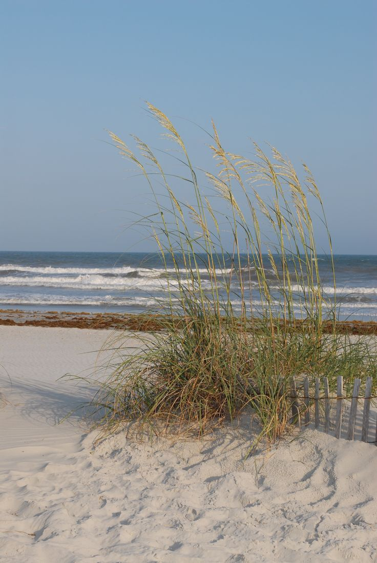 where I'll be come December.....North Myrtle Beach, SC