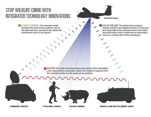3003870-inline-inline-1-protecting-wildlife-drones.jpg (640×495)