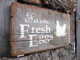 farm fresh chicken - Google Search