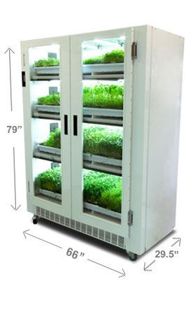 Greenhouse gardening 099 - Urban Cultivator Commercial Image Http Www