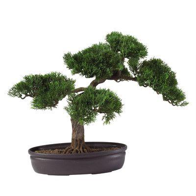 Silk Cedar Bonsai Desk Top Plant in Planter