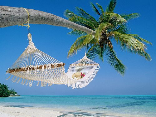 The Maldives Islands: Beaches, Vacation, Favorite Places, Dream, Hammocks, Places I D, Summer, Travel, Space
