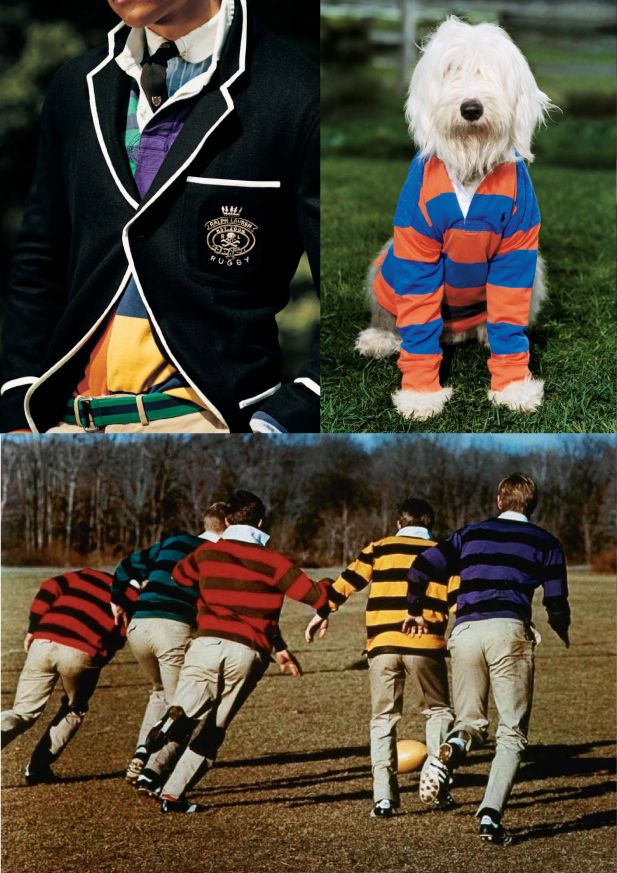 Not a huge fan of the rugby look, but that dog is TOO cute...he pulls it off!