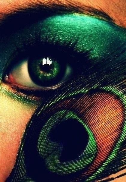...: Peacock Feathers, Feathers Art, Make Up, Eye Makeup, Eye Colors, Hazel Eye, Eyemakeup, Peacock Colors, Green Eye