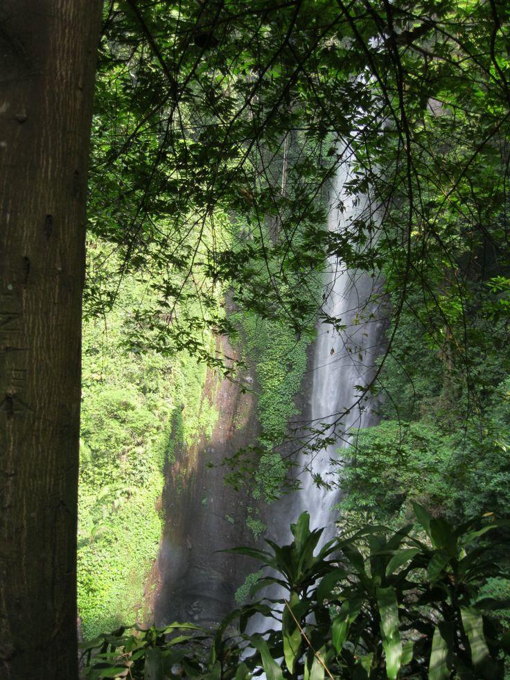 Putuk Truno Waterfall. Pasuruan, East Java, Indonesia.