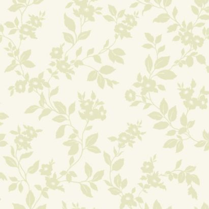 Colours Mayflower Green Paste The Wall Wallpaper