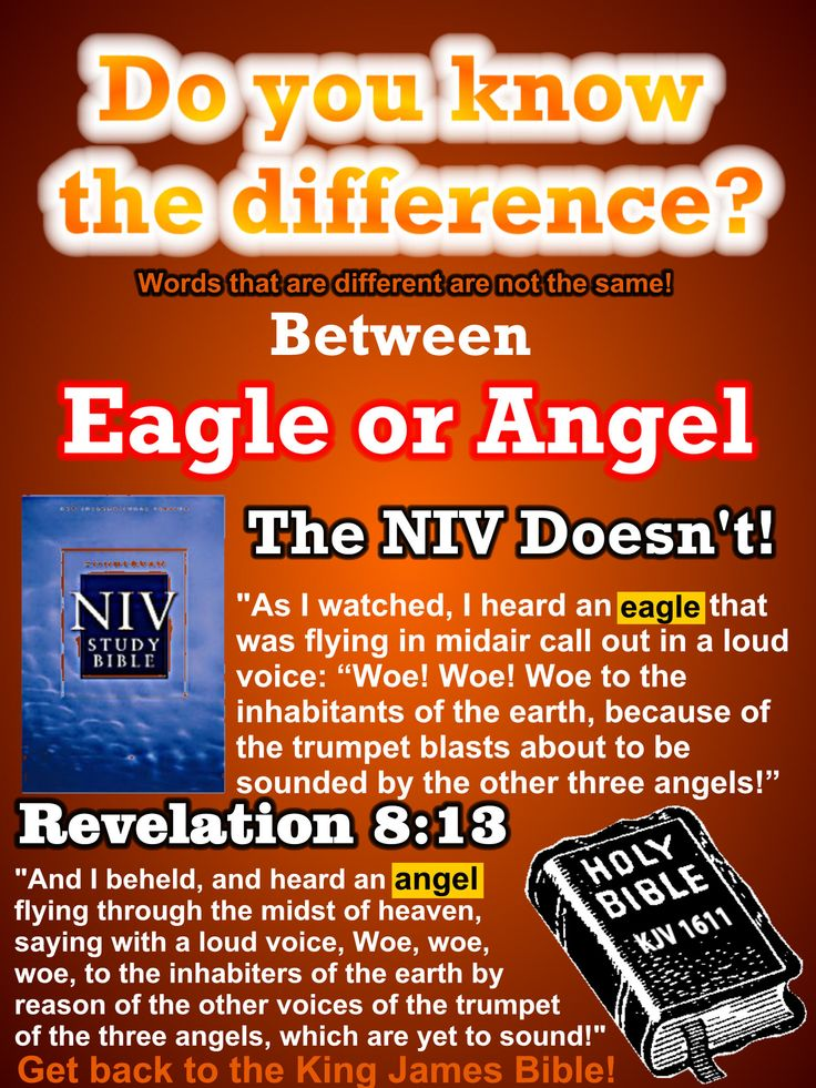 Do you think that an Eagle is an Angel? Or do you think an Angel is an Eagle? If you think that these are different than you are right! Every word of God is pure and to change even the smallest word is serious! Get back to the truth, get back to the King James Bible!