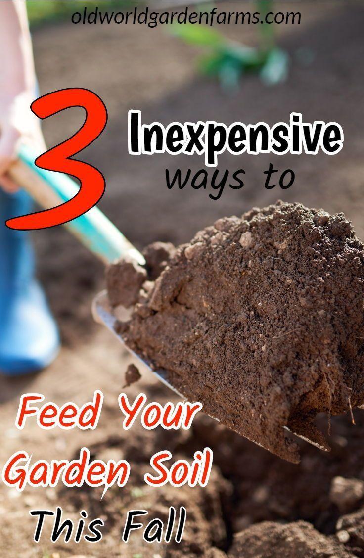 e180e20ac5b431049ee0a2e492681f80 - How To Prepare Soil For Next Year Gardening