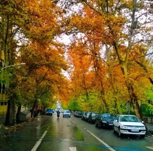 Street in Tehran City