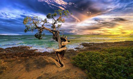 The Last Survival - Beaches Wallpaper ID 535601 - Desktop Nexus Nature