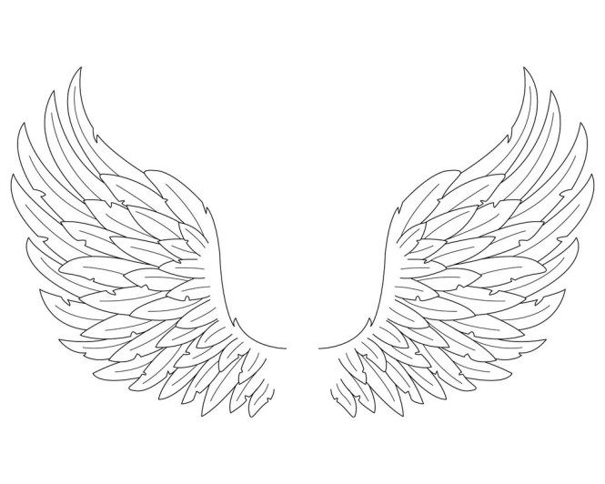 Image Result For Angel Wings Drawing Angel Wings Drawing Wings Drawing Angel Drawing
