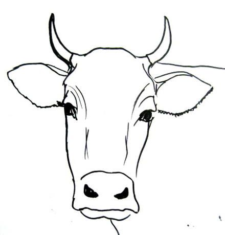 cow draw drawing face bull easy simple drawings head step cows cartoon animal sketch outline faces painting drawingandcrafts animals printable