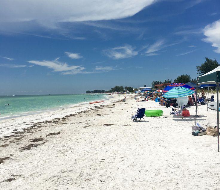 Anna maria island beach report-8041