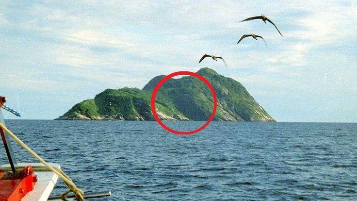 Die gefährlichste Insel der Welt! Queimada Grande die Schlangeninsel.     https://www.youtube.com/watch?v=GH75oPtS1Ww   #Bothrops insularis #Brasilien #fakten #Fernsehen #gefährlichste #gitftig #Insel #insel-lanzenotter #legende #leuchturm #Queimada Grande #schlange #Schlangeninsel #teuer #tipps #top welt #TopWelt #trends #tricks #tv #unterhaltung #wissen