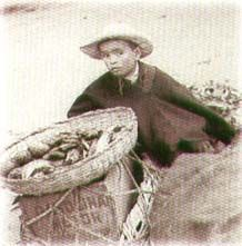 """""""Mercado de domingo"""" Luis B. Ramos 1935., Fotografía"""