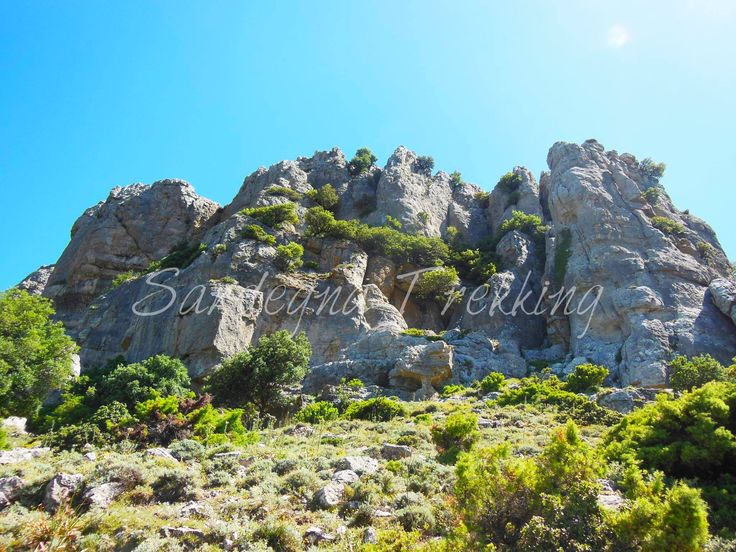 Supramonte Orgosolo. https://sardegnatrekking.wordpress.com/trekking/supramonte-di-orgosolo/