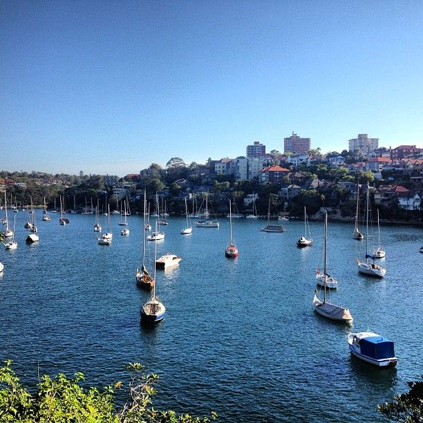 Cremorne Point Walk Hiking Trail in Sydney, Australia #JetpacCityGuides #hikes
