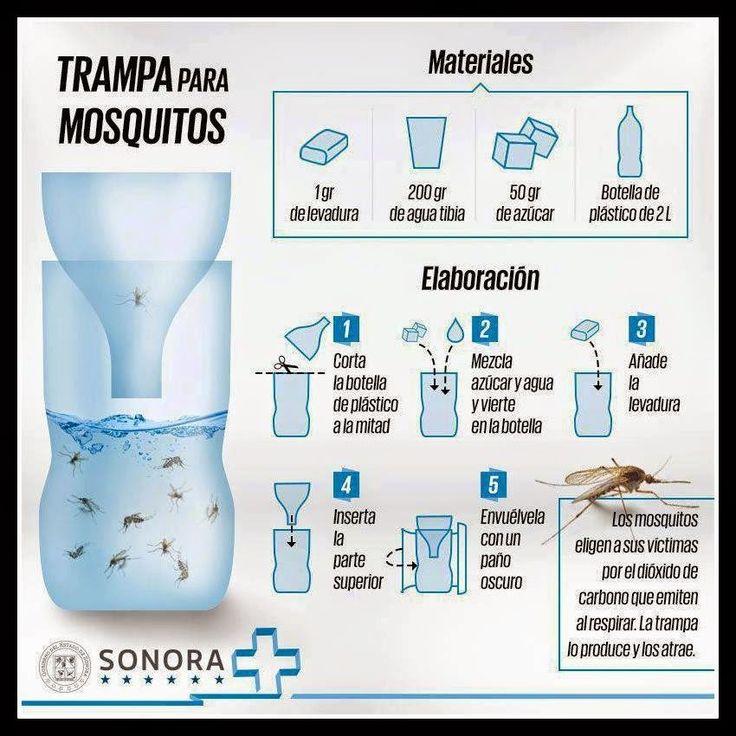 BRICOMANIACOS: Como hacer trampa casera para mosquitos