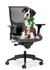 Semplicemente comoda per tutti! sedie ergonomiche per ufficio