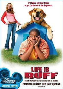 """A kid will do anything to buy a rare comic book (Kyle Massey, """"Beethoven's Christmas Adventure"""") - even buy a dog for the principal purpose of entering him in a dog show where the prize money can buy the comic. But friends and family warn that once you adopt a dog, he also adopts you; don't harm him in the making of your get-rich-quick scheme!"""