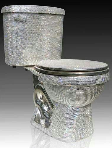 The most glorious of toilets. Because you've been holding it for just a wee bit too long!!