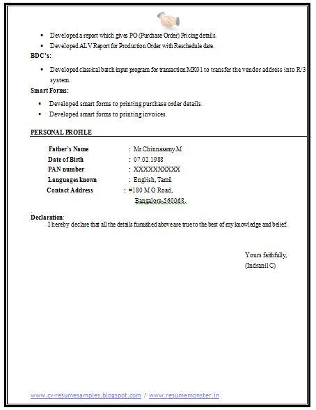 Computer Science Resume Sample (4)