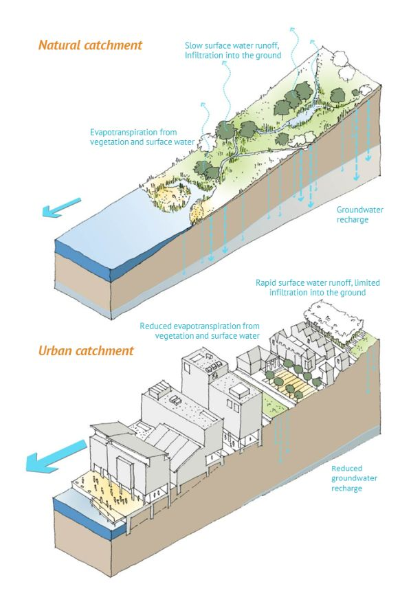 SuDS Impact of urbanisation on the water cycle