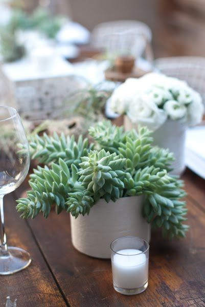 fun combo: white ranunculus and green succulents in modern white vases. JL Designs for 944 magazine, photos Aaron Young. http://jldesigns.blogspot.com/2011/02/organic-desert-retro-tablescape-for-944.html