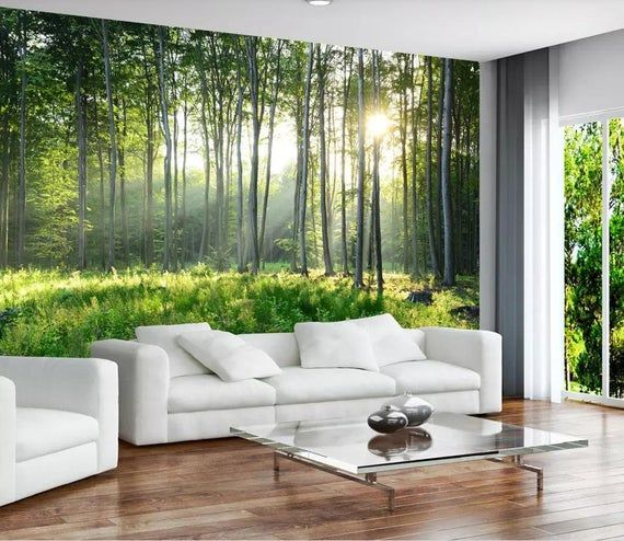 Peel-and-Stick Removable Wallpaper Birch Tree Forest Nature Modern Blue Sky