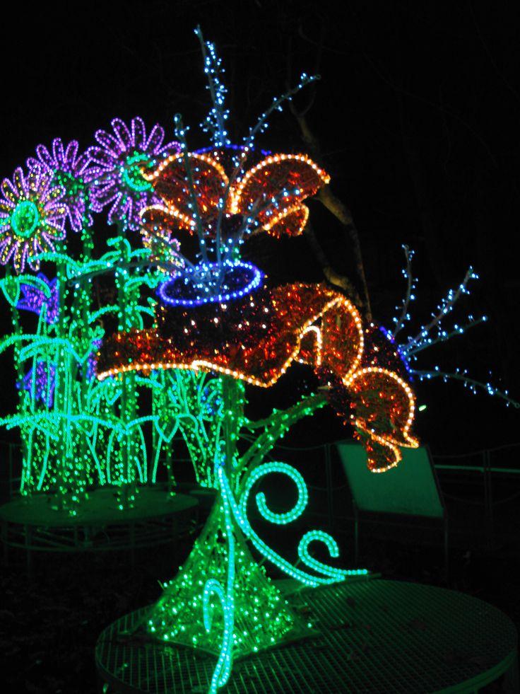 Magiczny Ogród Króla / King's Magic Garden | Królewski Ogród Światła / Royal Garden of Light | Muzeum Pałacu Króla Jana III w Wilanowie / Museum of King Jan III's Palace at Wilanów | Warsaw, Poland