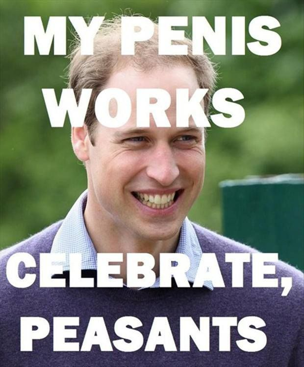 Prince Williams Penis 73