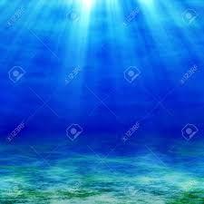Risultati immagini per foto fondali marini