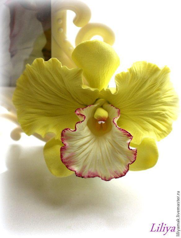 """Купить Орхидея """"Тропическая бабочка""""-зажим для волос - салатовый, орхидея из глины, орхидея ручной работы"""