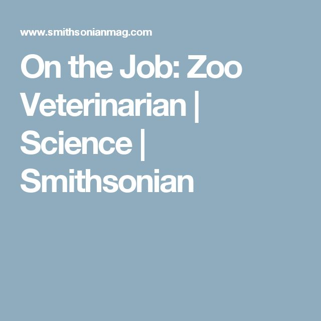 On the Job: Zoo Veterinarian | Science | Smithsonian