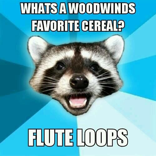 This is funny cause i play clarinet(woodwind). My music teacher calls the flutes flute loops...