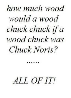 chuck norris funny   Funny Chuck Norris Graphics Code   Funny Chuck Norris Comments ...