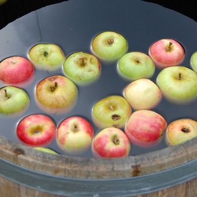 Why Apple Bobbing Is Actually a Female Fertility Ritual