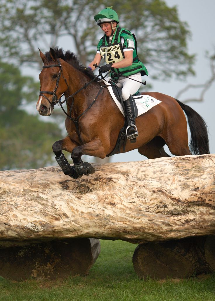 1000 Images About Eventing On Pinterest Thoroughbred