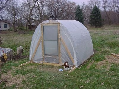 How To Build a Simple Greenhouse  This is a Cattle Panel Greenhouse. There is two ways you can do this . One was covered with Clear Plastic and is used as a green house. The other was covered with tarps and is used as a house for our chickens.