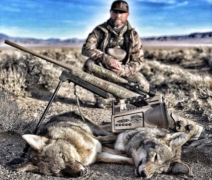 UTAH'S NEW COYOTE BOUNTY PHONE APP Predator hunting