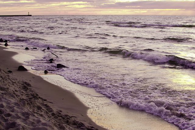 See, wave, shore, beach, violet, purple, sand