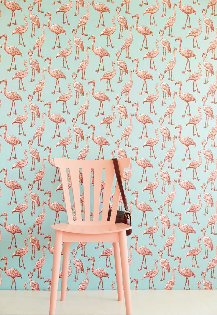 Flamingo Wallpaper Best Flamingo wallpaper, Flamingo and