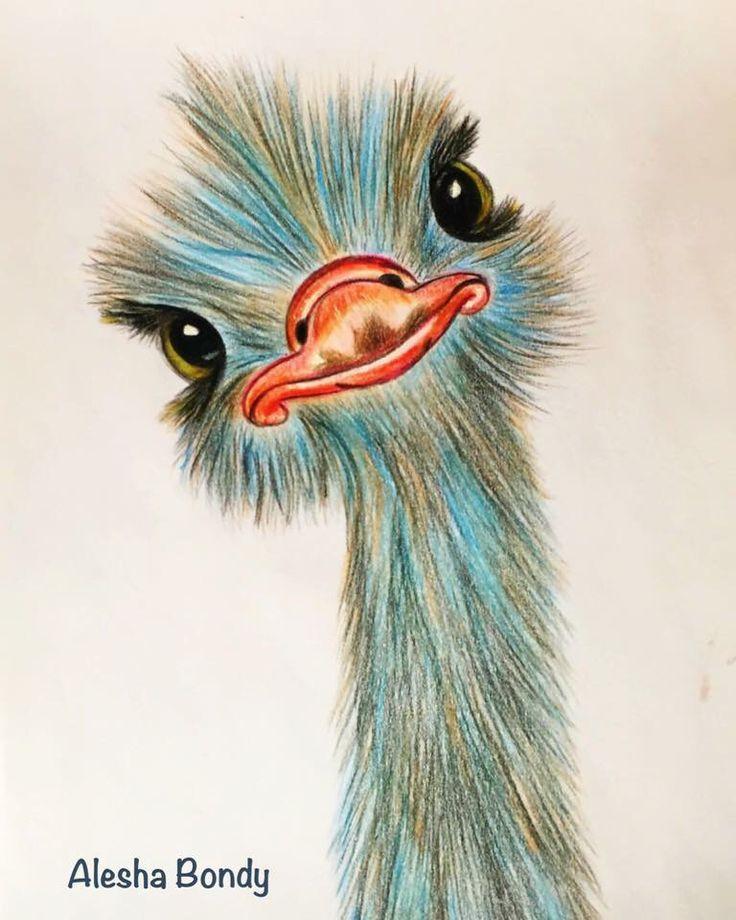 Ostrich – #Ostrich #tekenen