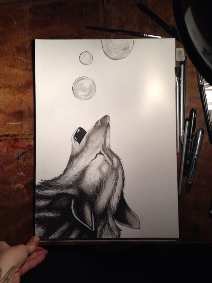 Wolf Howling Bubbles Illustration Art Watercolour Pen Drawing Pen Buy your A3 quality print from my etsyshop. Use link: https://www.etsy.com/no-en/shop/Rampestreken Or visit me at https://www.facebook.com/Rampestreken and order through inbox. Painting, drawing and photgraph by Ragnhild Marie Aston Hoddevik. Feel free to make requests, I also make orders:)