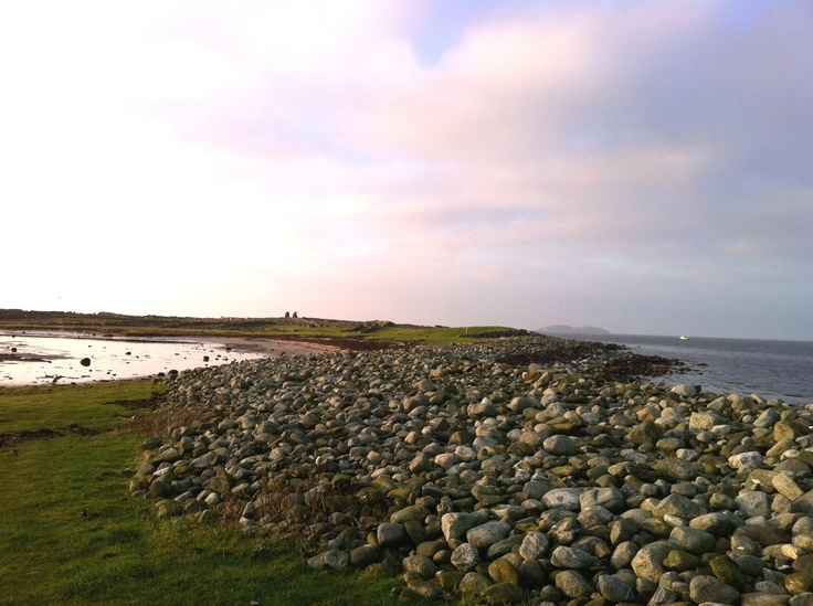 Børaunen beach is among the most diverse botanical sites in the country! The habitats and pastures are ideal for wetland birds! A perfect spot for birdwatching or for those who enjoy biology, nature and flora & fauna.