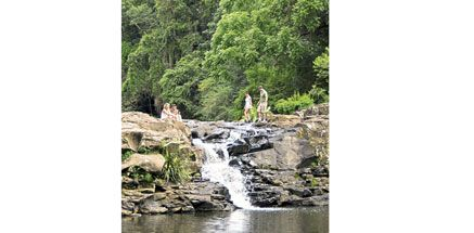 A guide to the Sunshine Coast walking trails.