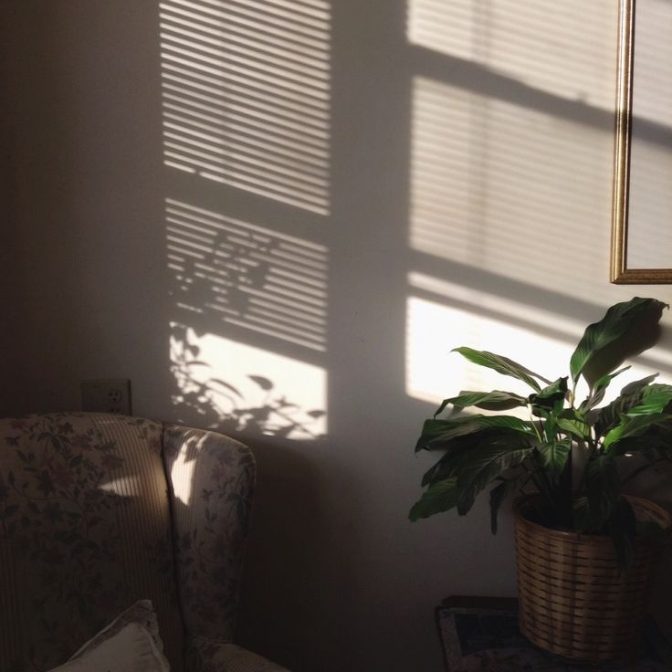 Shadows are nice vsco pinterest nice for Sunlight windows