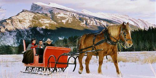 #elopeinbanff #Banffweddingphotographer #peakphotographybanff